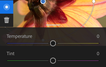 Photo of Adobe lanza nuevas aplicaciones creativas para ChromeBooks