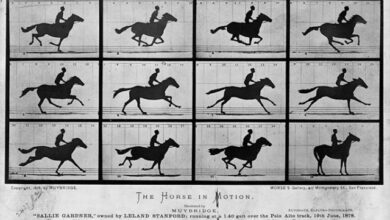 Photo of Historia de la fotografía: Muybridge y Marey