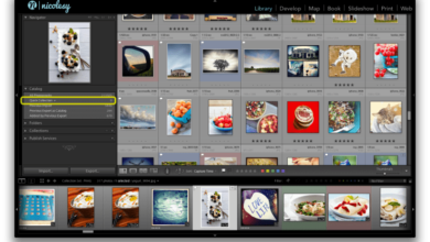 Photo of Uso de colecciones de Lightroom para organizar sus fotos