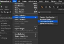 Photo of ¿Capture One Pro 20 es una alternativa viable a Lightroom?